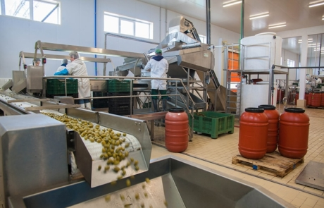 3.PVG Hellas - Machinery specialized in olive selection