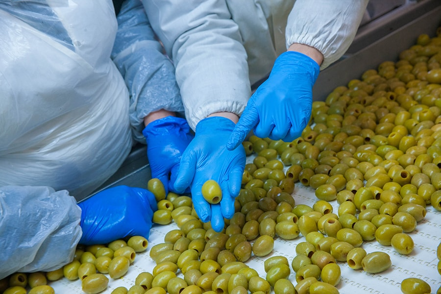 PVG Hellas - Trading greek olives with high quality assurance
